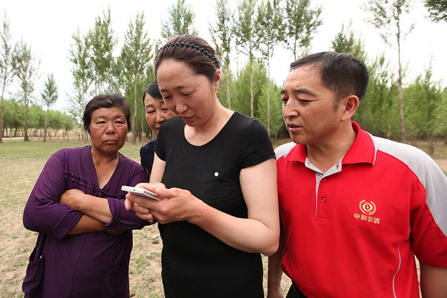 Four Chinese people standing outside looking at smart phone.